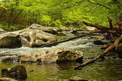 Photograph - Boulders And Driftwood by Robert Hebert