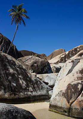 Cruising The Coast Wall Art - Photograph - Boulders And Palm Trees by Georgia Mizuleva