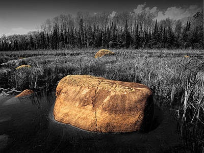 Food And Flowers Still Life - Boulders in a Pond near the Boundary Waters by Randall Nyhof