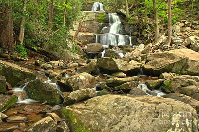 Photograph - Boulders Logs And Lower Laurel Falls by Adam Jewell