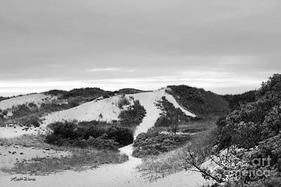 Photograph - Bound Brook Island Dunes Cape Cod by Michelle Constantine