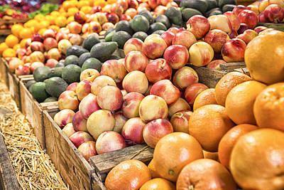 Farmstand Photograph - Bounty by Caitlyn  Grasso