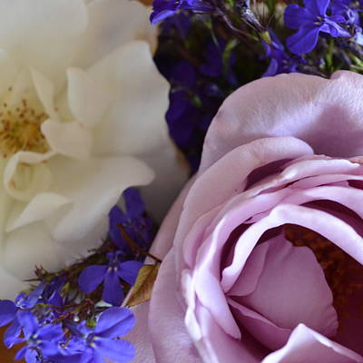 Photograph - Roses And Violets  by Cheryl Miller
