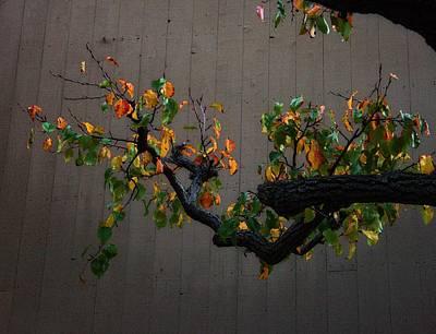 Bouquet From Autumn Leaves.three. Art Print by Viktor Savchenko