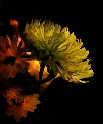Photograph - Bouquet In Light by Grace Dillon