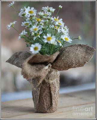 Bouquet Of Chamomile  Art Print by Petko Pemaro