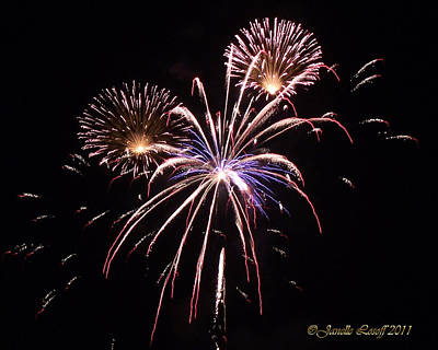 Bouquet Of Fire Fireworks Original by Janelle Losoff