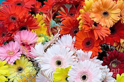 Gerbera Daisy Photograph - Bouquet Of Gerbera Daisies by Oscar Gutierrez