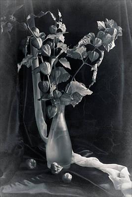 Bouquet Of Physalis Art Print