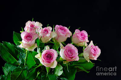 Photograph - Bouquet Of Pink Roses At Black Background by Kennerth and Birgitta Kullman