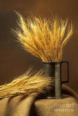 Bouquet Of Wheat Art Print by Bernard Jaubert