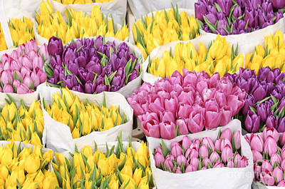 Roses Photograph - Bouquets Of Tulip Flowers At A Flower Market by Oscar Gutierrez