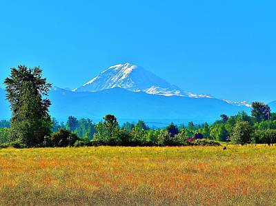 Bovine View Of Mt. Rainier Art Print