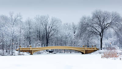 Winter Storm Photograph - Bow Bridge In Central Park Nyc by Mihai Andritoiu
