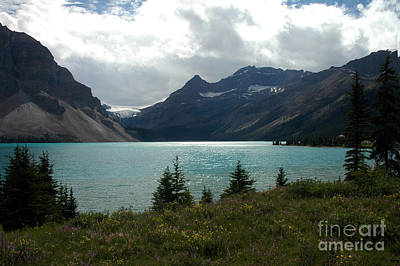 1021a Bow Lake Alberta Art Print