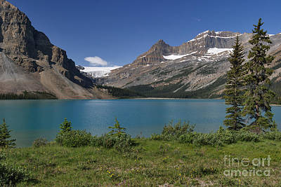 Photograph - Bow Lake And Glacier by Charles Kozierok