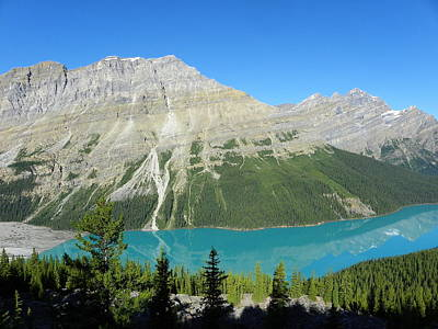 Photograph - Peyto Lake by Georgia Hamlin