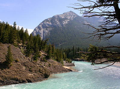 Photograph - Bow River 2 by Betty-Anne McDonald