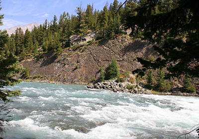 Photograph - Bow River by Betty-Anne McDonald