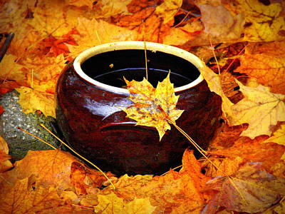 Art Print featuring the photograph Bowl And Leaves by Rodney Lee Williams