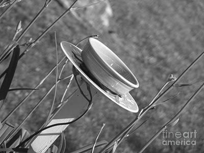 Photograph - Bowl Bird Bath by Melissa Lightner