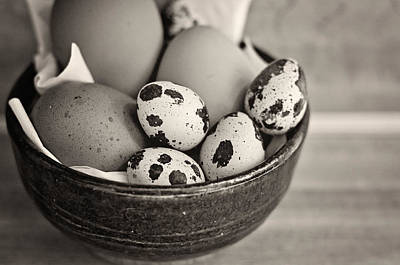 Eggs Photograph - Bowl Of Eggs Bw by Heather Applegate