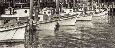 Reflection Photograph - Bows Out Sepia by Scott Campbell