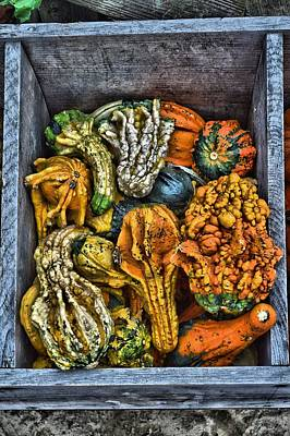 Photograph - Box Of Gourds by Thomas  MacPherson Jr