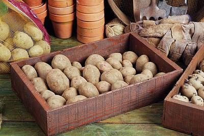 Potato Photograph - Box Of Potatoes by Geoff Kidd