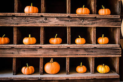 Boxed In Pumpkins Art Print