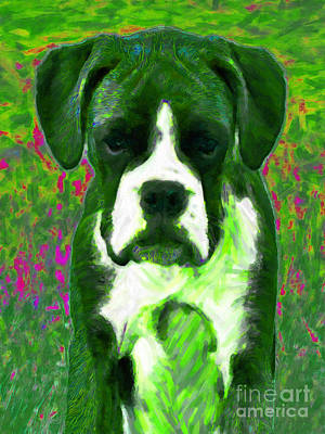 Boxer Puppy Digital Art - Boxer 20130126v3 by Wingsdomain Art and Photography