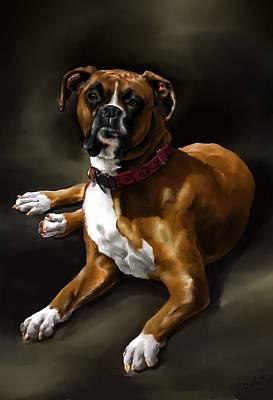 Boxer Dog Digital Art - Boxer by Cassandra Gallant