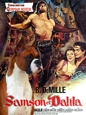 Boxer Painting - Boxer Dog Art Canvas Print - Samson And Delilah Movie Poster by Sandra Sij