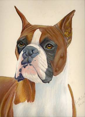 Painting - Boxer Dog by Ruth Seal