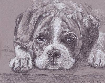 Boxer Puppy Art Print by Katrina Nixon