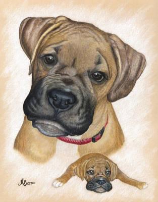 Boxer Puppy Art Print by Maureen Clarke