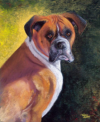 Painting - Boxer by Terry Albert