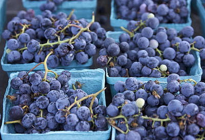 Boxes Of Fresh Concord Grapes At Farmers Market In Nyc. Art Print by Scott W Baker