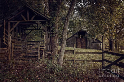 Photograph - Boxley Valley Barn by Larry McMahon