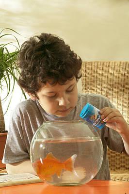 Fish Bowl Photograph - Boy Feeding Goldfish by Jean-Michel Labat