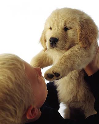 Boy Holding Puppy Up Art Print by Ron Nickel