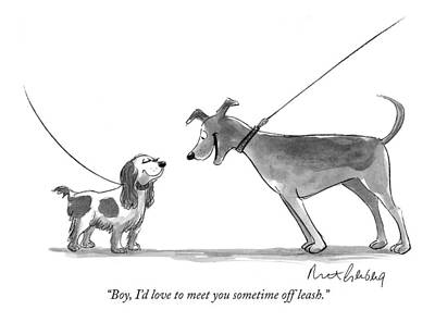 Spaniel Drawing - Boy, I'd Love To Meet You Sometime Off Leash by Mort Gerberg