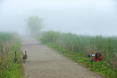 Boy Photographing A Pair Of Geese Print by Tim Laman