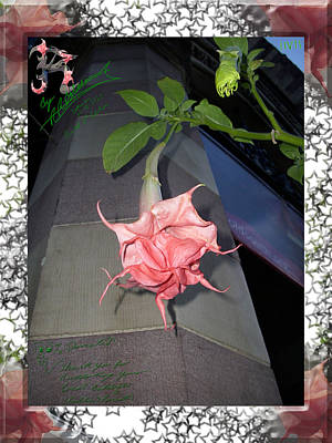 Boylston Flower Art Print by R R  Balasar