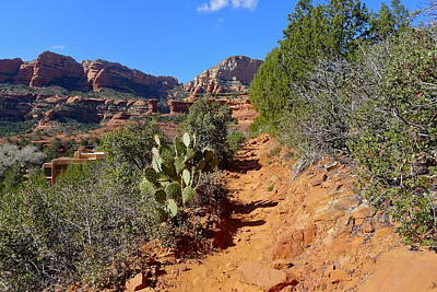 Photograph - Boynton Canyon Trail by Denise Mazzocco