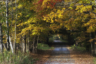 Bradford County Fall 2013 Art Print
