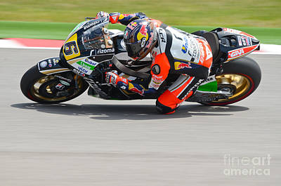 Photograph - Bradl by Jeff Loh