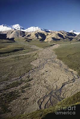 Alluvium Photograph - Braided River In Alaska by William H. Mullins