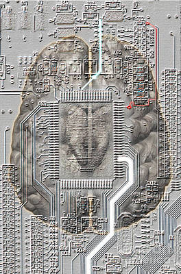 Brain Circuit Art Print by Mike Agliolo
