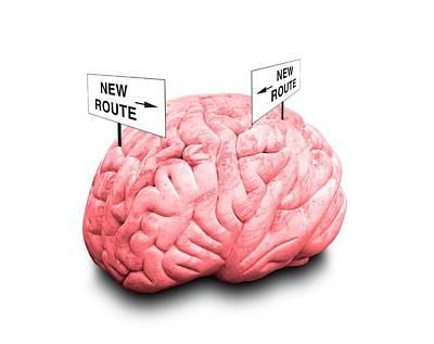 Brain Plasticity Art Print by Victor De Schwanberg/science Photo Library